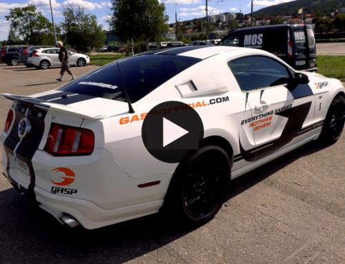 MOS går på ormjakt och hittar en giftig Shelby GT500