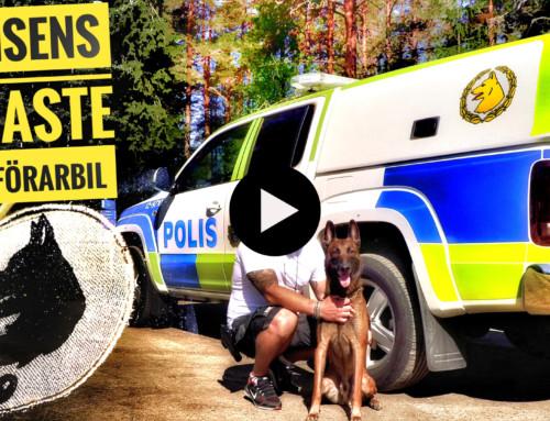 Polisens senaste hundförarbil